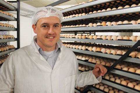 BBC: Poultry firm Annyalla Chicks to open Wrexham hatchery